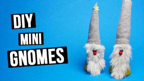 DIY Mini Gnomes Tutorial