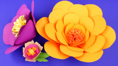DIY Paper Flower Decorations